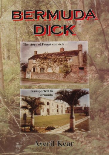 Bermuda Dick, by Averil Kear